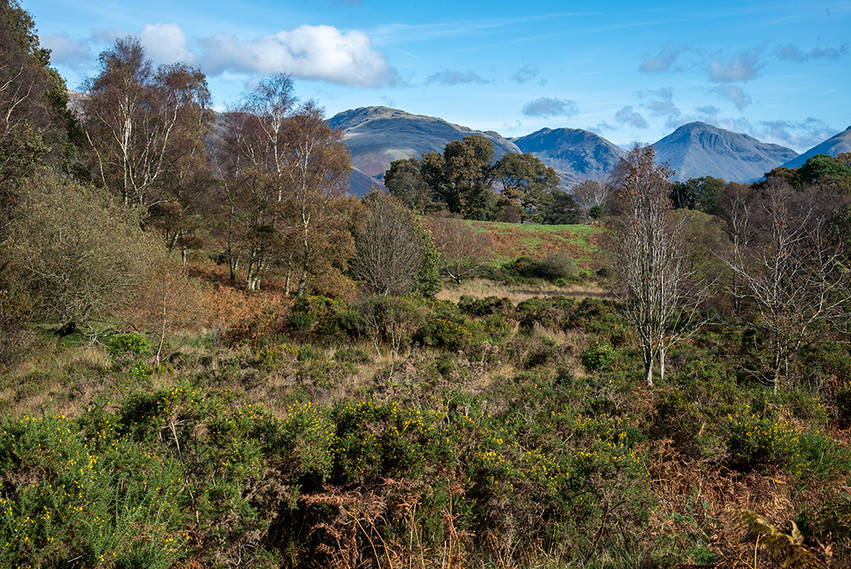 Woodhow (Great Gable & Scafell Pike in the background) 02