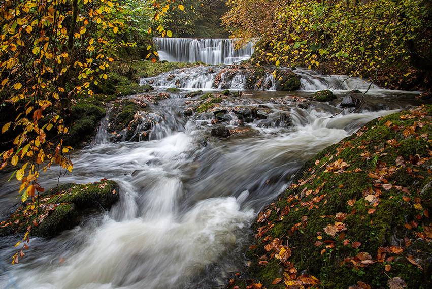 Lower Falls 04