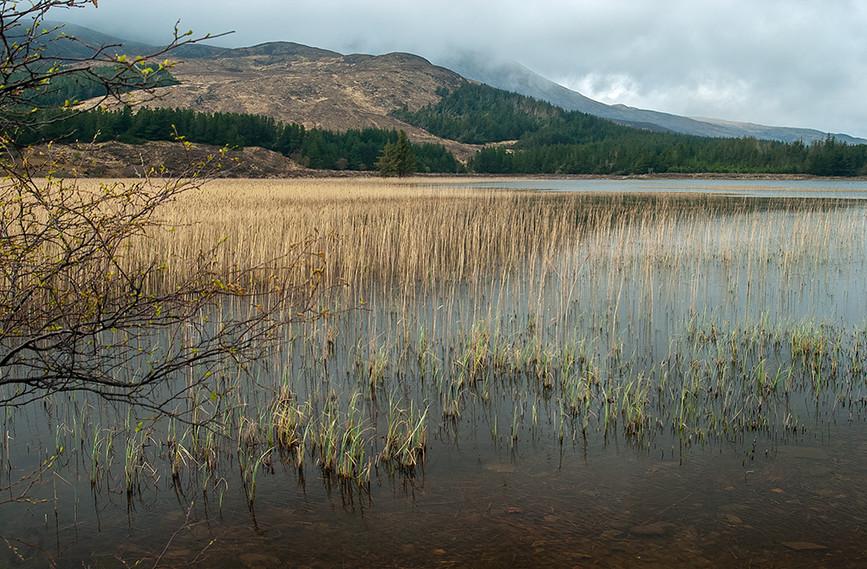 Loch Cill Chriosd with Meall Coire Forsaidh behind 02
