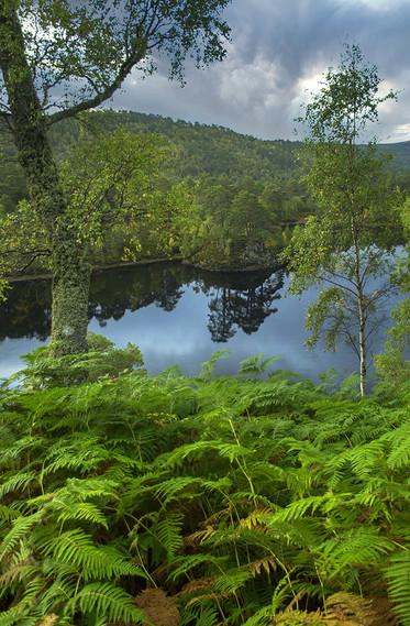 Loch Beinn a Mheadhoin 02