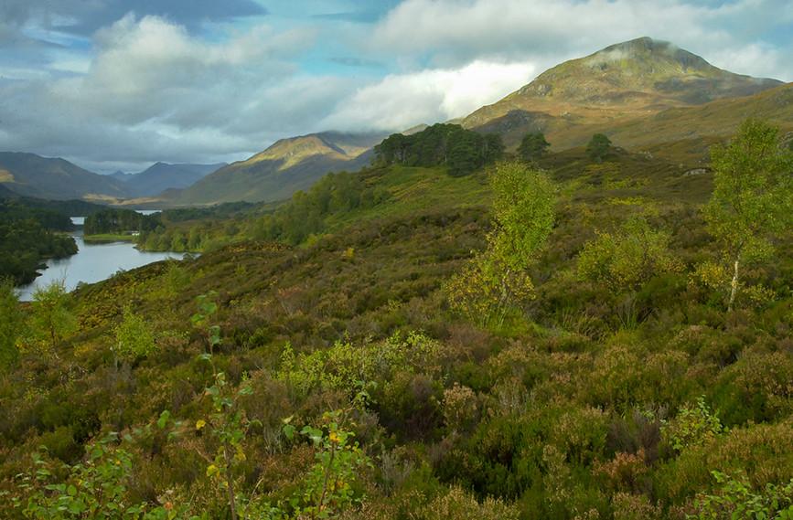 Sgurr Na Lapaich & Loch Affric