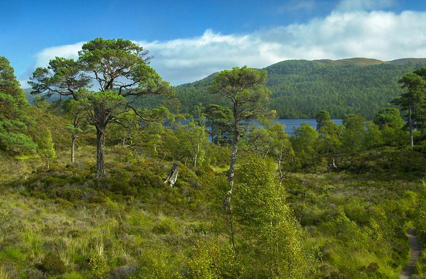 View towards Loch Beinn a Mheadhoin 03