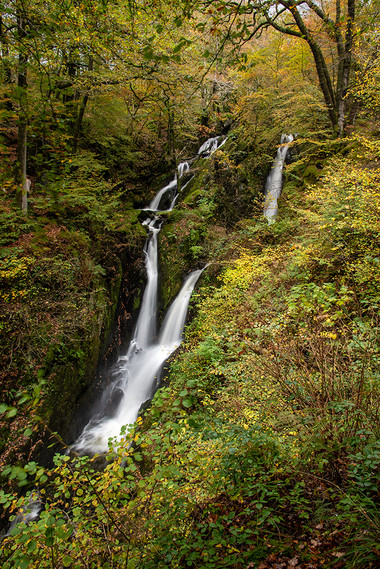 Stock Ghyll Force (autumn) 04
