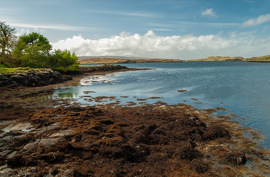 View towards Loch Dunvegan