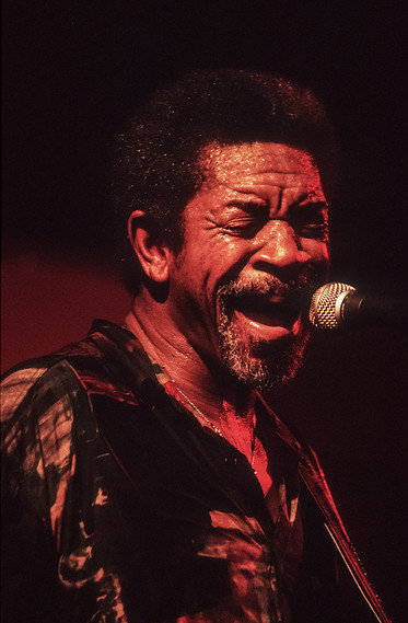 Luther Allison 15