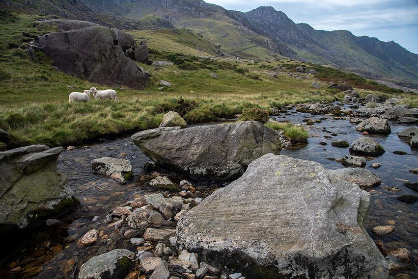 Nant Peris River looking South 08