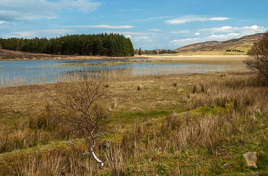 Loch Cill Chriosd looking northeast