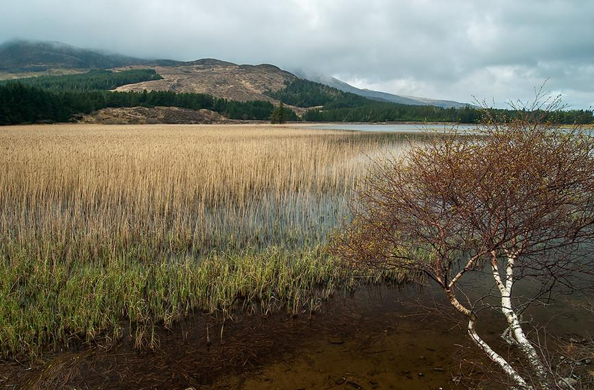 Loch Cill Chriosd with Meall Coire Forsaidh behind 01
