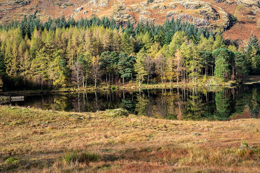 Blea Tarn reflections