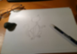 Katze Nala entstehung Zeichnung