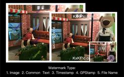Sample Watermark