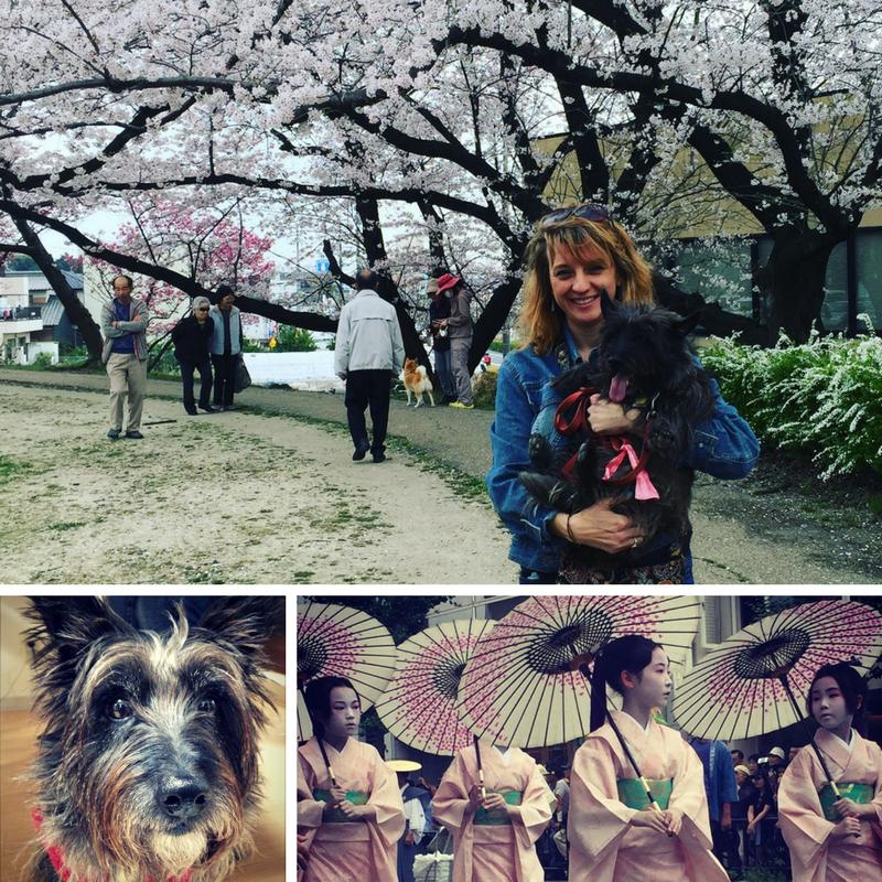 Larissa in Japan