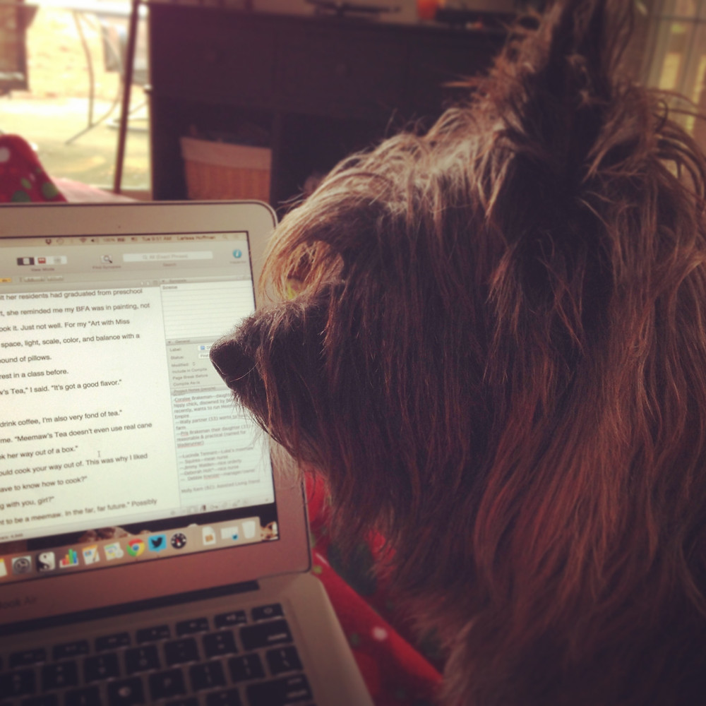 My editor, Biscuit the cairn terrior