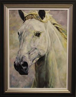 White Stallion