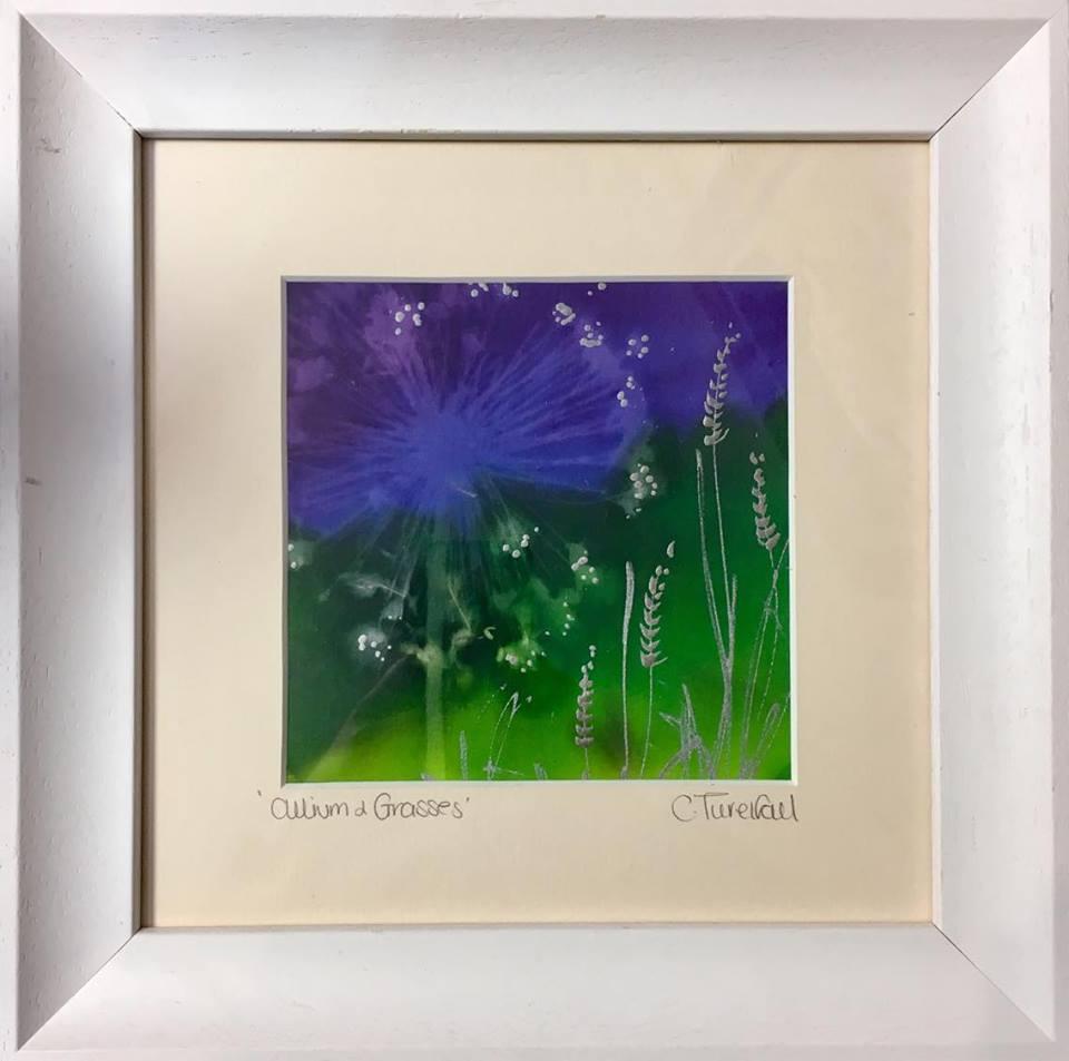 Allium and Grasses