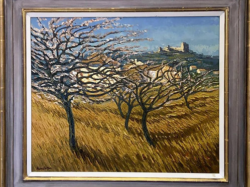 Cherry Orchard near Lacoste