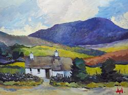 Snowdonia Cottage