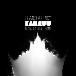 KAMAUU - Transparency