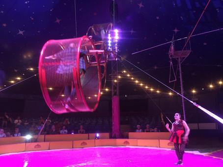 Paulos Circus Invite