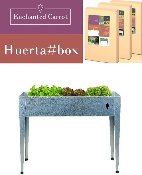Huerta#box Enchanted Carrot