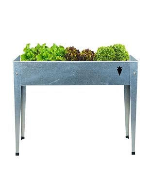 Huerta#box 1 Huerta material galvanizado Enchanted Carrot