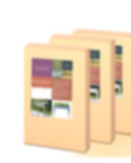 Caja huerta#box Enchaned Carrot