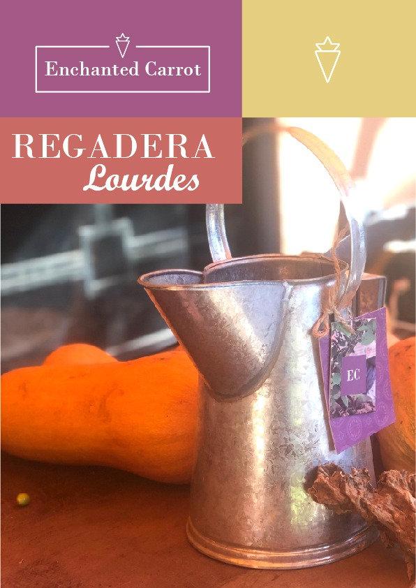 Regadera Lourdes