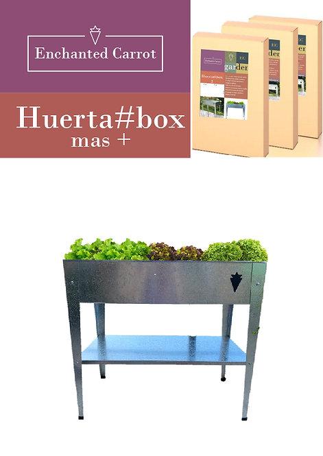 Huertabox Mas