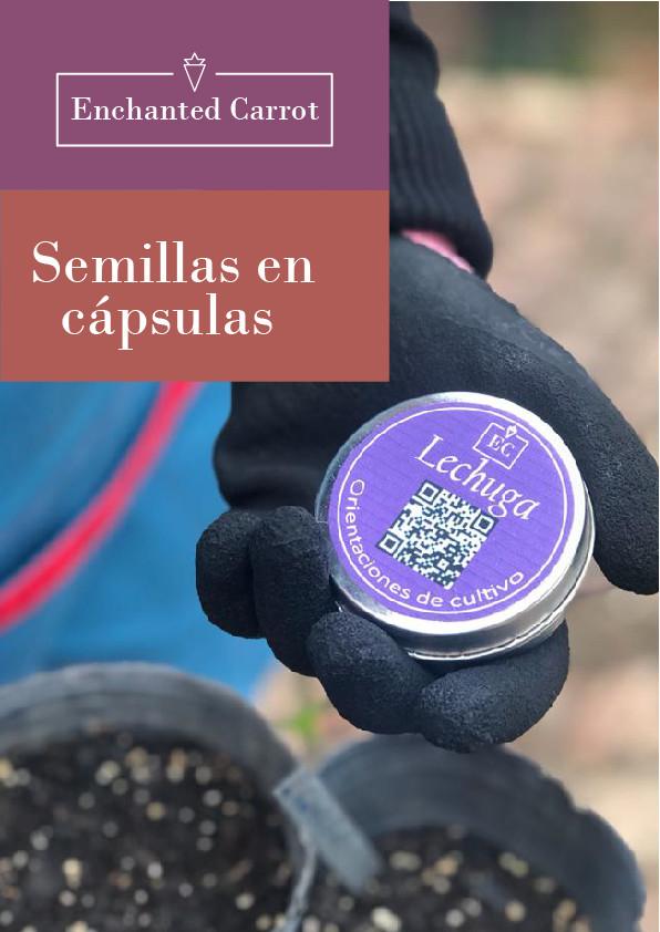 semilla capsula-100.jpg