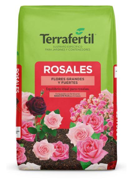 Terra fertil Rosales.JPG