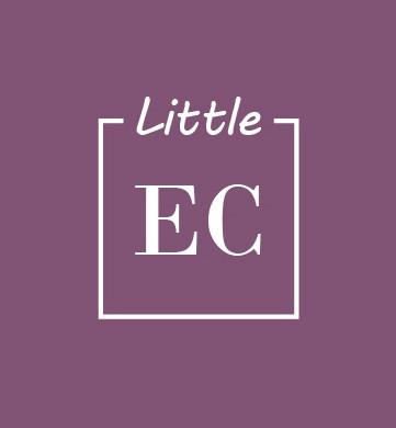 Logo Little chiquito-100.jpg
