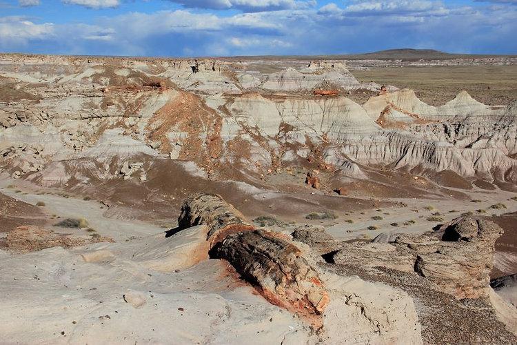 ペトリファイドフォレスト、ペインテッドデザート、三畳紀、チンル層、アメリカ、アリゾナ、グランドサークル