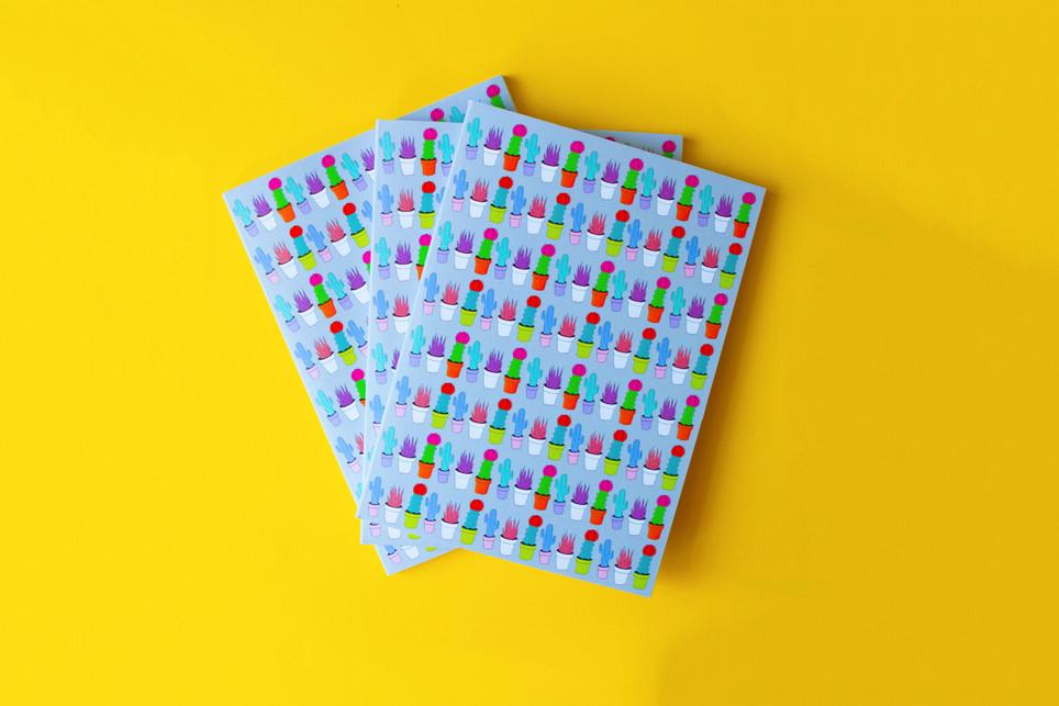 Cactus Notebooks!