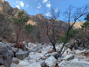 rocks_mountains_trees.jpg