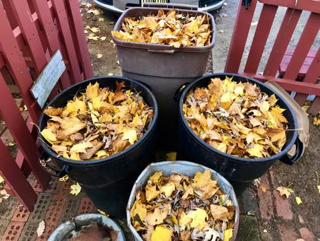 Don't Feel Like Running? Rake Leaves!