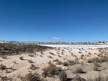 blue_sky_sand_landscape.jpg