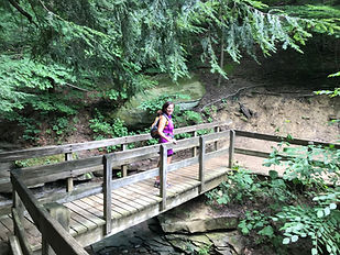 hiking_bridge.jpg