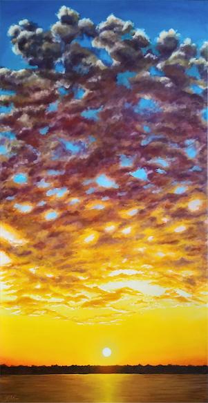 Port Orange Sky