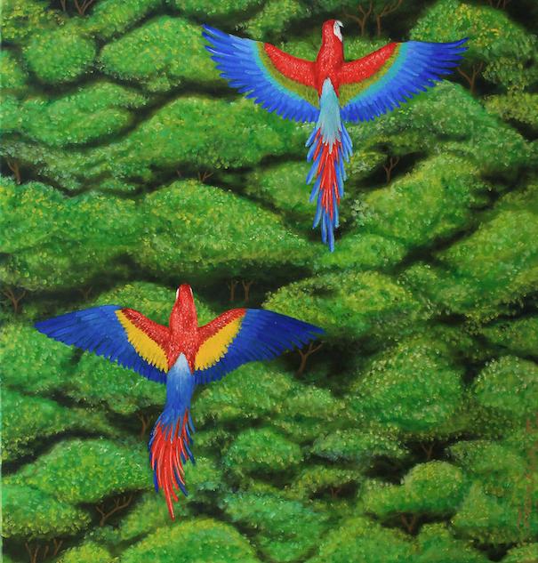 """""""Tropical Wings"""""""