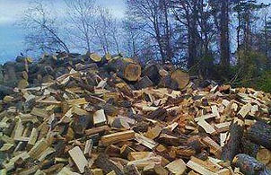 huge pile of firewood