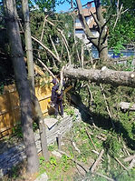 Tree fell down on fence causing damage in NY