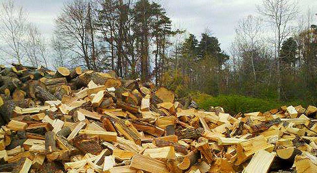 large pile of firewood in Fulton, NY