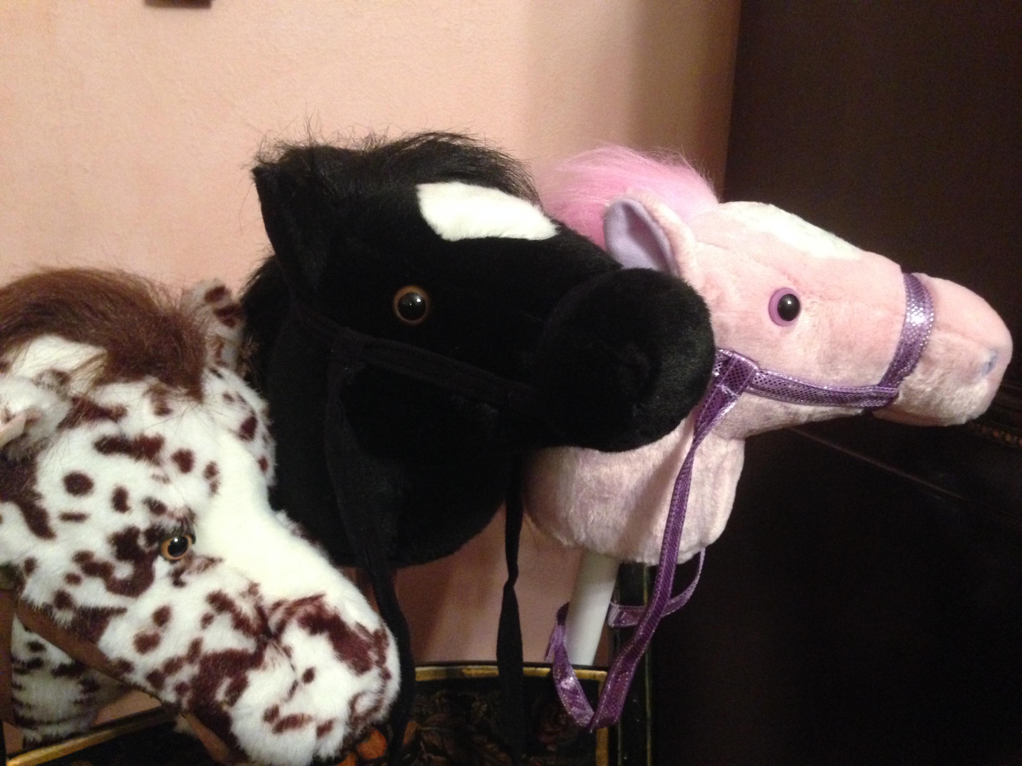 hobby horses of hope