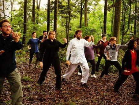 Where Medicine and Martial Arts Meet
