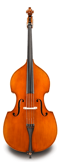 Raul Emiliani VB928