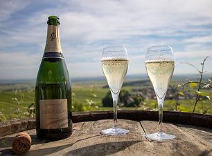 champagne-leclere-pointillart-vignes-bou