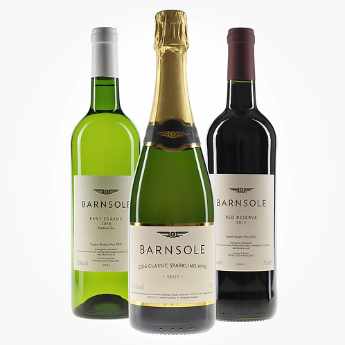 Barnsole Vineyard Kent Wine Experience