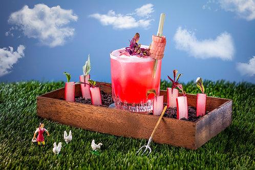 Rhubarb Sour For 2