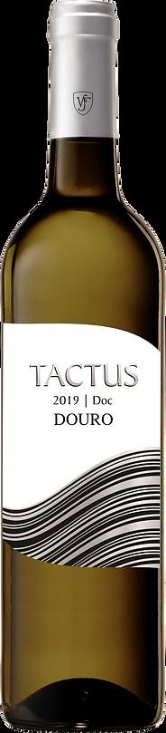 tactus2019B