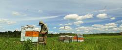 photos-agroalimentaire
